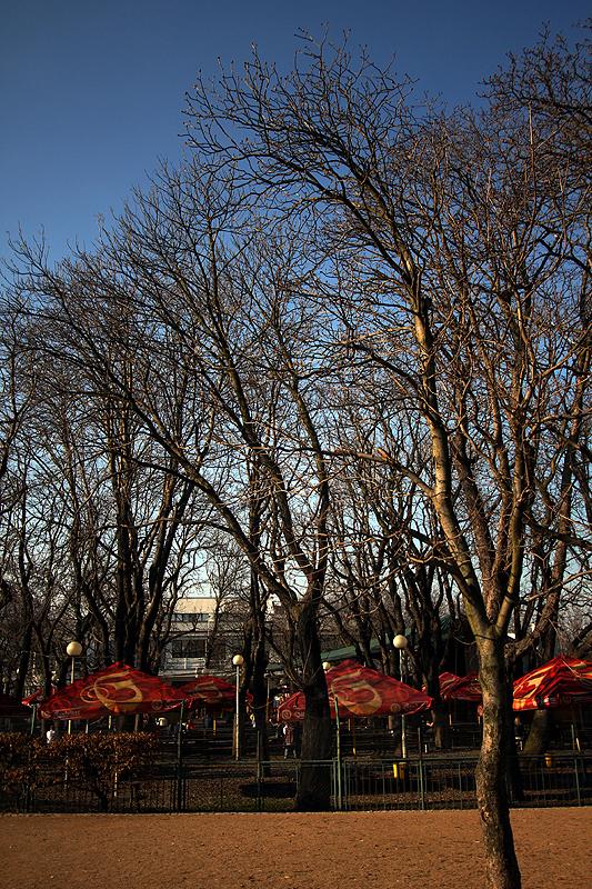 Zahrádka restaurace v Riegrových sadech otevřená